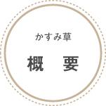 npo_about_gaiyou.jpg